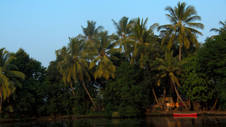 Fin de journée sur les backwaters