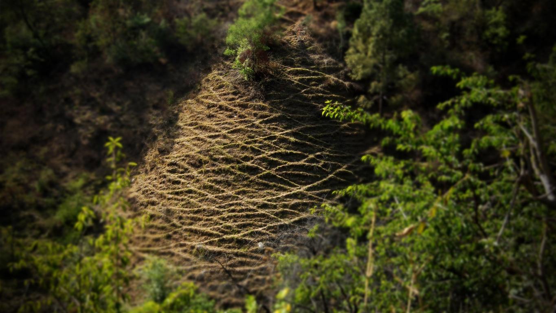"""Le """"foin"""" vient d'être coupé pour l'hiver entre Renukaji et Shimla"""