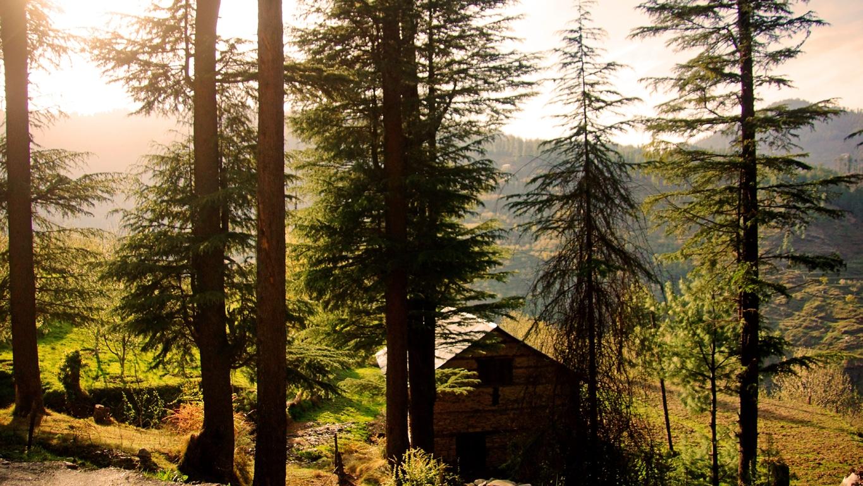 Une petite ferme la route d'accès à Hatu peak (Narkanda, Himachal Pradesh)