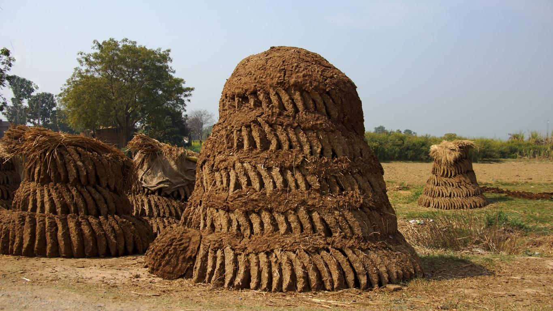A Varanasi, comme en de nombreux endroits, le combustible le plus courant est la bouse de vache séchée (3)